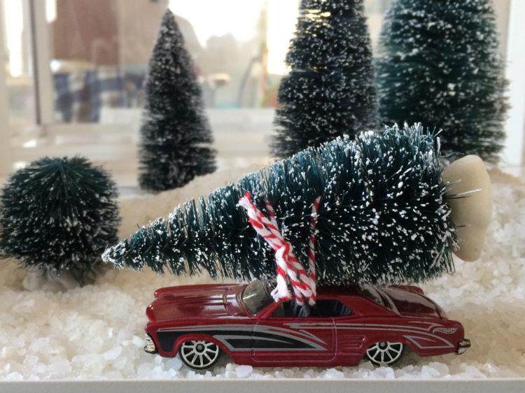 Paesaggio natalizio in miniatura
