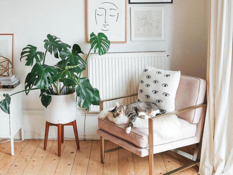 Come arredare una casa piccola: 8 suggerimenti utili